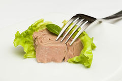 Ingeblikte tonijnbrokken stock fotografie