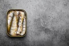 Ingeblikte vissen in een tin stock foto