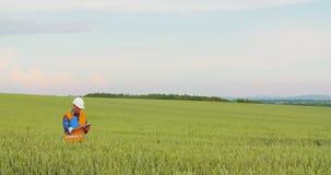 Ingegnere che analizza la fattoria contro il cielo video d archivio