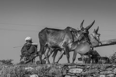 Ingegneria d'agricoltura antica Immagine Stock Libera da Diritti