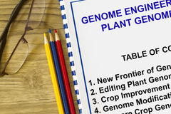 Ingegneria del genoma e tecnologia del genoma della pianta Immagine Stock Libera da Diritti