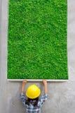 Ingegneria della bambina con la verniciatura della struttura dell'erba verde sulla parete Immagine Stock