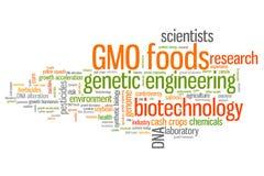 Ingegneria genetica dell'alimento Immagine Stock Libera da Diritti