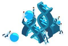 Ingegneria genetica isometrica, struttura del DNA illustrazione di stock