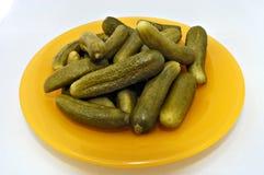 Ingelegde augurken (jonge komkommers) Royalty-vrije Stock Afbeeldingen