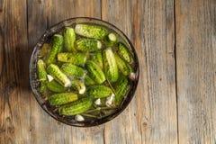 Ingelegde komkommers Stock Foto's