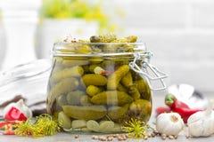 Ingelegde komkommers, kleine gemarineerde groenten in het zuur Stock Afbeelding