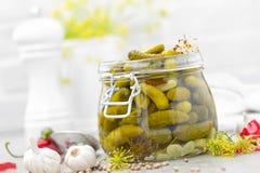Ingelegde komkommers, kleine gemarineerde groenten in het zuur Royalty-vrije Stock Foto's