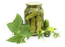 Ingelegde komkommers in kruik Royalty-vrije Stock Fotografie
