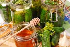 Ingelegde komkommers met honing Stock Fotografie