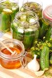 Ingelegde komkommers met honing Royalty-vrije Stock Afbeeldingen