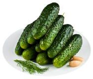 Ingelegde komkommers in witte plaat Royalty-vrije Stock Foto