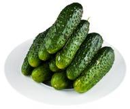 Ingelegde komkommers in witte plaat Royalty-vrije Stock Afbeeldingen