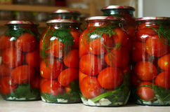 Ingelegde tomaten Royalty-vrije Stock Afbeeldingen