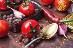Ingelegde tomaten in de herfst Stock Foto's