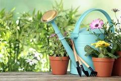 Ingemaakt bloeiend bloemen en het tuinieren materiaal stock fotografie