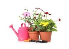Ingemaakt bloeiend bloemen en het tuinieren materiaal royalty-vrije stock foto