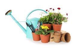 Ingemaakt bloeiend bloemen en het tuinieren materiaal stock afbeelding