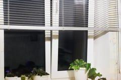 Ingemaakte ingemaakte bloementribune op de vensterbank stock foto's