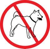 Ingen hund royaltyfri bild