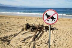 Ingen hundkapplöpning Royaltyfri Fotografi