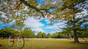 Ingen modern cykeldeisng för märke Royaltyfri Foto
