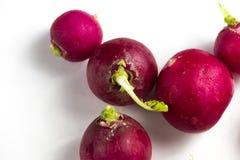 ingen photoshoped röd rädisa 100% för naturlig eco som isoleras på vit Royaltyfri Foto