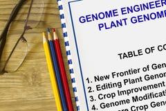 Ingeniería del genoma y tecnología del genoma de la planta Imagen de archivo libre de regalías