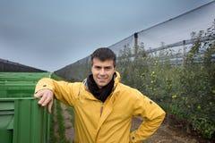Ingenieur im Obstgarten Stockbilder