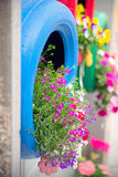 Ingenious, original and environmentally friendly method of recycling of tires car as planters, detail of the blue one. Ingenious, original and environmentally royalty free stock image