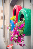 Ingenious, original and environmentally friendly method of recycling of tires car as planters (detail of the red and green) Royalty Free Stock Images