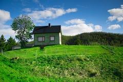 Ingesloten groen huis op de heuvel Stock Afbeeldingen