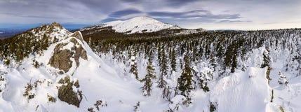Ingesneeuwd de winterlandschap met bergpiek Stock Fotografie