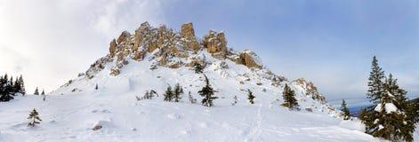Ingesneeuwd de winterlandschap met bergpiek royalty-vrije stock fotografie