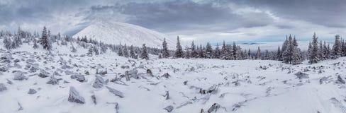 Ingesneeuwd de winterlandschap met bergpiek Stock Afbeelding