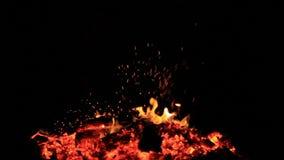 inget ljud Sexton 16 sekunder av glöd rörde från en brasa som brändes till små flammor arkivfilmer