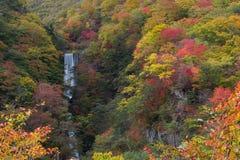 Inget namn som är litet av vattenfallet i höstfärger Vattenfallet ses från vägrenbilparkering under ner in mot den Nikko staden fotografering för bildbyråer