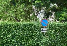 Inget parkeringstecken på trädväggbakgrunden Arkivfoto