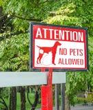 Inget tillåtet tecken för husdjur på porten i parkera Arkivbild