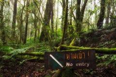 Inget tillträdestecken på Ang Ka Luang Nature Trail är en bildande naturslinga inom en regnskog på maximumet av Doi Inthanon Nati royaltyfri fotografi