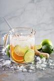 Ingett vatten med citrusfrukter Arkivbilder