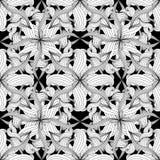 Ingewikkeld abstract zwart-wit bloemen vector naadloos geklets vector illustratie