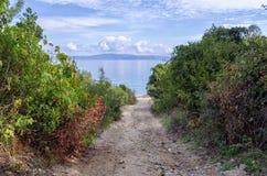 Inghiai il percorso ad una spiaggia isolata in Sithonia, Grecia Immagine Stock