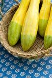 Ingiallisca lo zucchini immagini stock libere da diritti