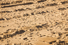 inglaterra Southport Luxor, Egipto Playa perturbada Fotografía de archivo libre de regalías