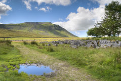 Ingleborough Stock Afbeelding