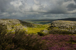 Ingleborough nationell naturreserv Arkivfoto