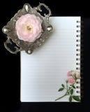 Inglese Rosa Fotografia Stock