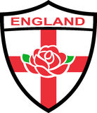 Inglese Rosa dello schermo dell'Inghilterra Fotografia Stock Libera da Diritti
