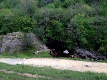 Ingleton瀑布小河 库存照片
